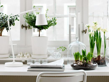 RoyaumeStyleDeco-Idée déco Terrarium by Ikea