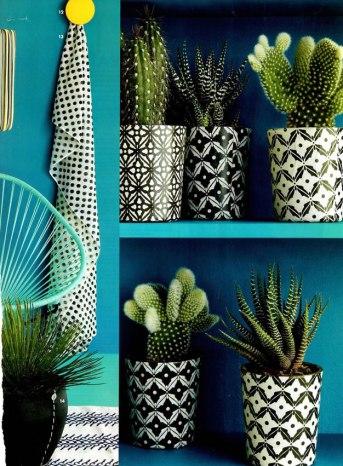 Décoration plantes étangères cache-pots noirs et blancs